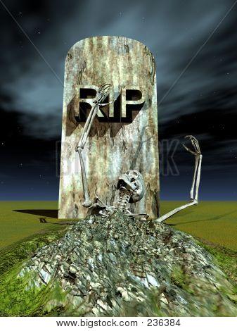 Bone Grave