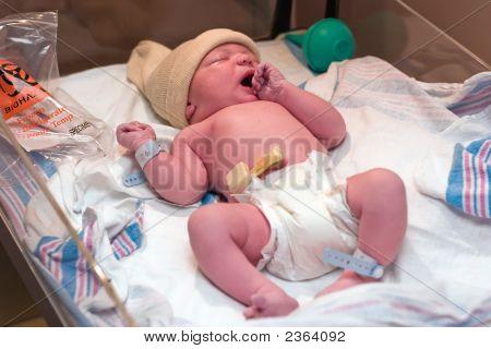 Newborn Baby Resting In Hospital