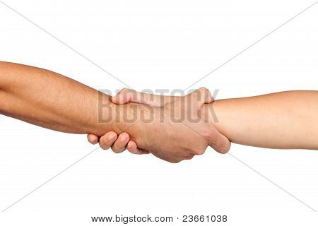 Handshake Of Friendship