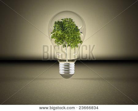Light bulb and green tree