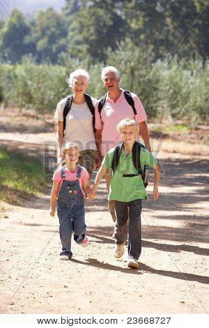 Senior couple and grandchildren on country walk