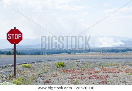 Forest Fire and Stop Sign