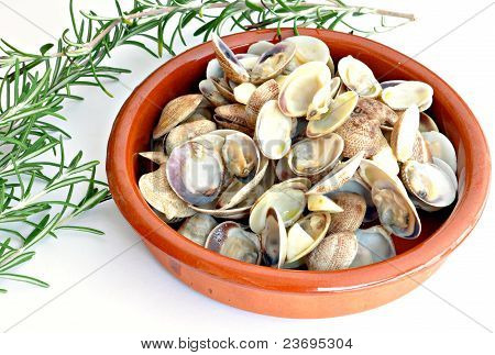 Casserole with clams