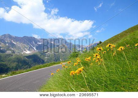 Alps In Italy