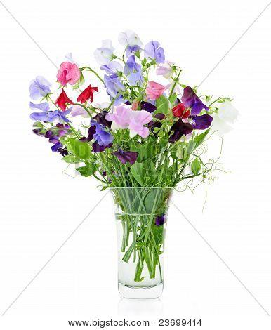Ramo de flores de arveja en florero