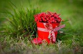 Berry Season. Red Bucket With Berries . Harvest Of Berries.organic Bio Berries poster