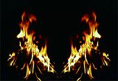 Background Of Fire. Texture Fire Flames Throughout The Space. Fire Red Up Close. The Background With poster