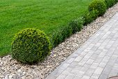 Decorated Stone Paths Among Shrubs And Flower Beds In Landscape Design poster
