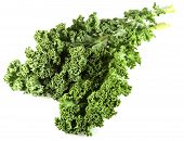 Close-up View Of Kale Leaves. Kale Or Leaf Cabbage Are Cultivars Of Cabbage, Brassica Oleracea, Grow poster