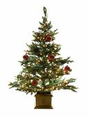 foto of xmas tree  - Decorated christmas tree isolated on a white background - JPG