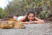 Tourist people enjoying wildlife and nature looking at Galapagos Land Iguana - yellow land iguana in poster