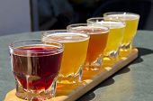 picture of malt  - Five small glasses of beer arranged in a row - JPG