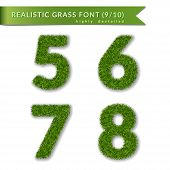 Grass Numbers 5 6 7 8. Green Numbers Five, Six, Seven, Eight Isolated On White Background. Green Gra poster