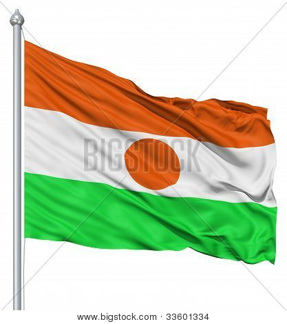 Waving flag of Niger