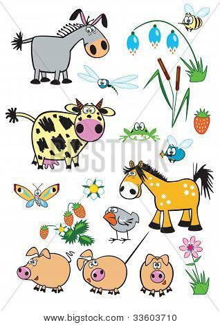 Animals Collection.eps