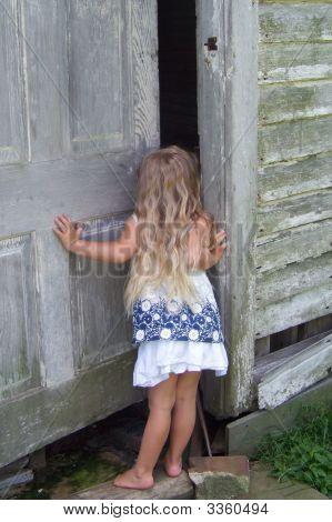 Little Girl Looking Inside