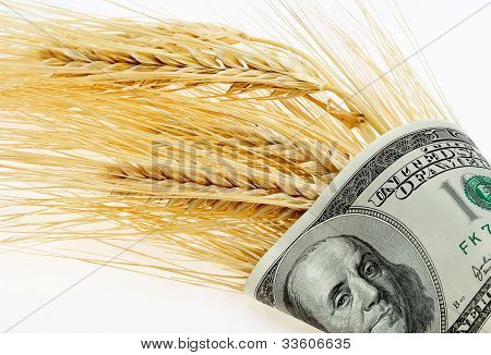Spikes Of Wheat Wrapped In Dollars On A Light Background