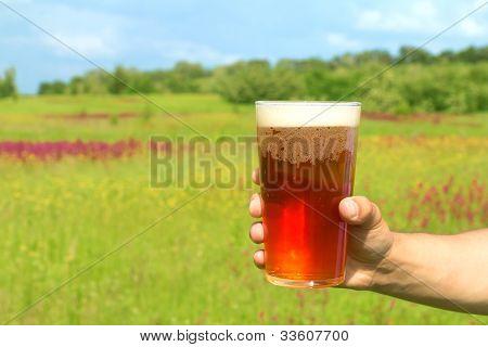 Copo de cerveja na mão contra o fundo de Primavera
