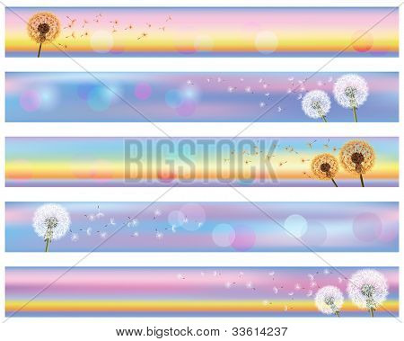 Set Of Horizontal Floral Banners With Flower Dandelion