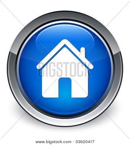Home icon (3d vector)