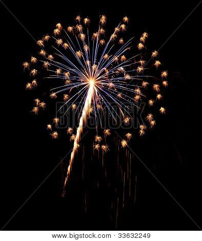 A burst of Fireworks in the night sky.
