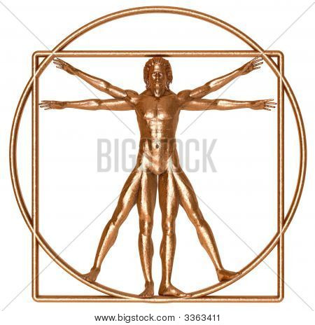 Bronze Vitruvian Man