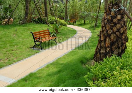 Walkway Through A Tranquil Garden