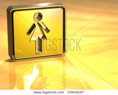 3D Women Toilet Gold Sign