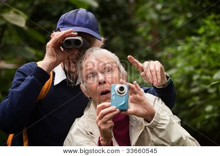 Couple Searching In Forest
