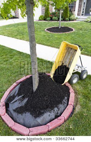 Dumping Mulch