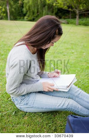 Young serious student sitting in a parkland while doing her homework on a notebook