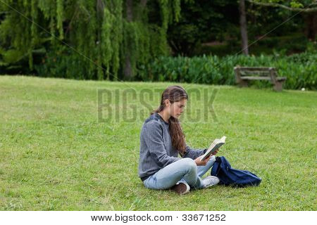 Young girl sitting cross-legged on the grass in a park while reading a book
