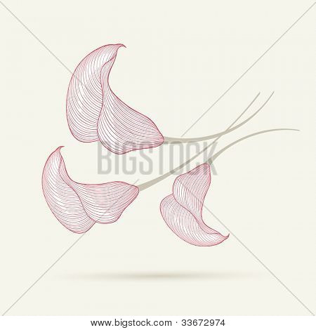 Hand-drawing floral background with flower calla. Element for design. Vector illustration.