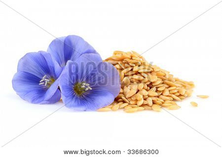 Flax flowers with seeds