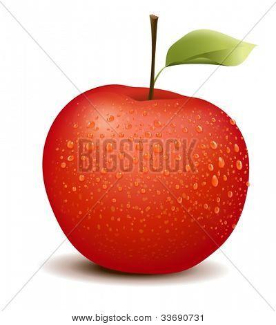 Illustration of photo-like red apple