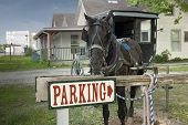 picture of mennonite  - A horse and buggy are tied up to a parking sign beside a country house in a rural community - JPG