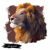 Lion Animal Watercolor Portrait In Closeup. Deep-chested Cat With Mane Looking Aside. Mammal Symbol  poster