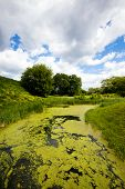 stock photo of boggy  - small boggy river - JPG