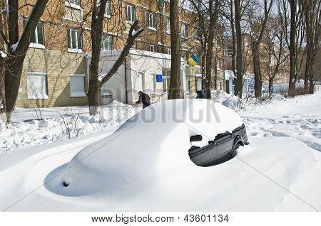 Transport Collapse After The Abundant Snowfall In Kiev