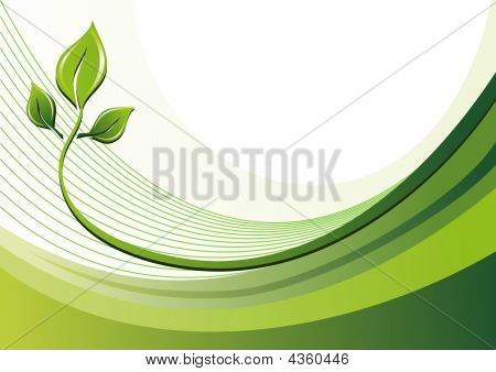 Nature Eco Background With Leaves