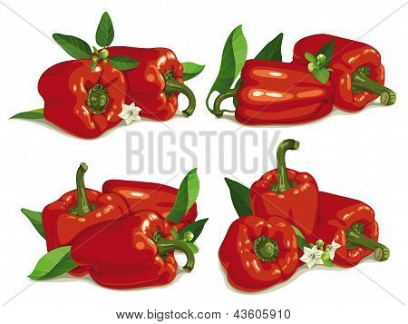 Set Of Red Pepper
