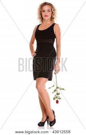 Beautiful Young Woman Blonde Romantic Rose