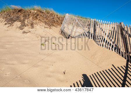 Sand dunes at Cape Cod