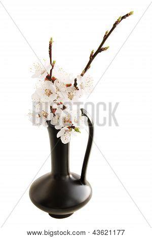 Spring Ikebana