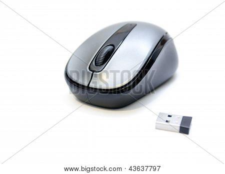 Computer-Maus