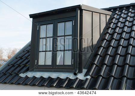 Modern Vertical Roof Window