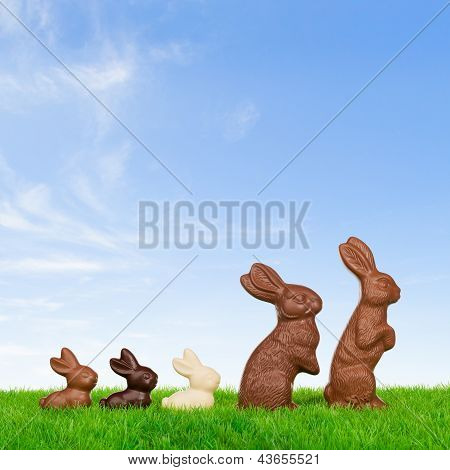 Happy Easter Bunny Family