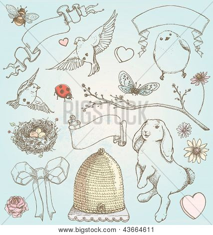 Hand Drawn Vintage Spring Elements Vector Set