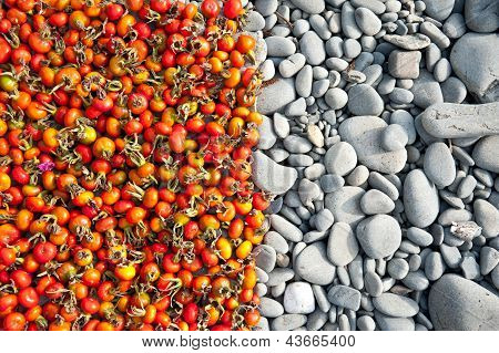 Briar And Stones