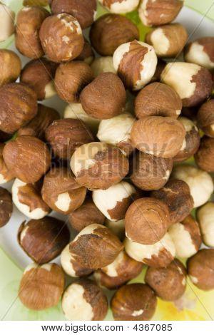 Filbert (hazelnut) On Saucer